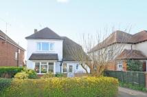 3 bedroom Detached home in Farnham, Surrey