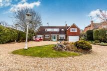Detached property in Farnham, Surrey