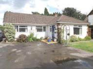 3 bed Bungalow in Liphook, Hampshire