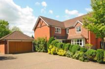 Detached home in Gomshall, Guildford...