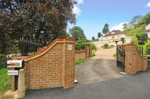 5 bed Detached home for sale in Bramley, Guildford...