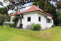 Bungalow for sale in Station Road, Fairlie...