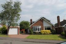 4 bed Bungalow for sale in Newbold Terrace East...