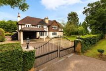 5 bed Equestrian Facility home for sale in Little Wymondley...