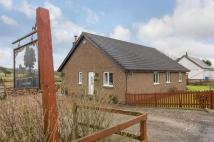 4 bed Equestrian Facility house for sale in Auchengray, Carnwath...