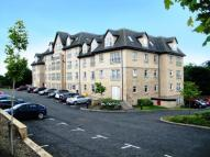 new Flat in Marina Road, Bathgate...
