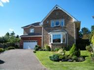 Detached house for sale in Gallacher Green...