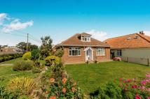 Bungalow for sale in Dungeness Road, Lydd...