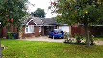 Bungalow for sale in Meadow Close...