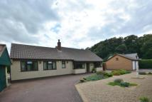 Bungalow for sale in Dereham Road, Easton...