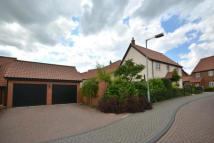 Link Detached House for sale in Stearn Close, Easton...