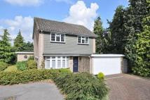 Detached house for sale in Rawlings Close, Orpington