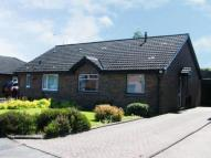 Bungalow for sale in Tarras Drive, Renfrew...