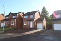 3 bedroom Detached property for sale in Lounsdale Avenue...
