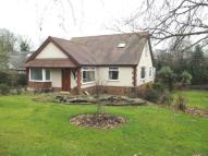 4 bed Bungalow for sale in Whitethorn Avenue...
