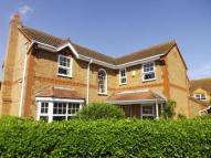 Detached house for sale in Westminster Gardens, Eye...