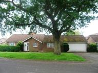 Bungalow in Petersfield, Hampshire