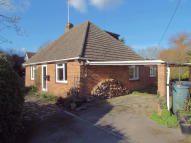 Bungalow in Passfield, Liphook...