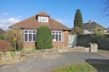 Bungalow for sale in Orpington