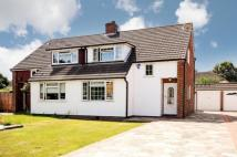3 bed semi detached home for sale in Fontwell Drive, Bromley