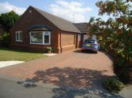 Bungalow for sale in Plas penrhyn