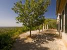 property for sale in Mallorca, Selva, Selva