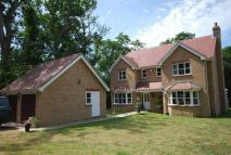 4 bed home to rent in Ascot House, Quarr Hill...