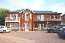 Flat to rent in Languard manor Road, ...