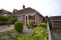 Semi-Detached Bungalow to rent in The Oaks, Amos Hill...