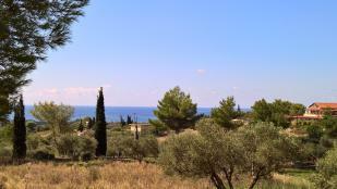 The views