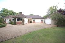 property for sale in Holmsley Road, Wootton, New Milton