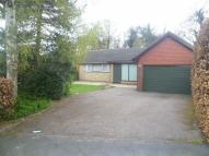 Detached Bungalow in Kingsway Road, Leicester