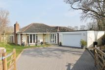 Detached Bungalow in Forest Oak Drive...