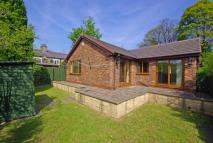 3 bedroom Detached Bungalow for sale in The Bungalow, Coach Lane...