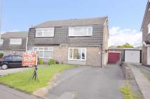 semi detached property to rent in Albion Street...