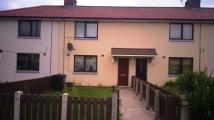 Terraced property to rent in Borland  Avenue...