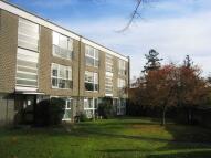 Flat to rent in WINDSOR CROSSWAYS COURT