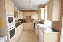 Terraced house to rent in Cecil Avenue, Warmsworth...