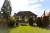 3 bed Detached Bungalow for sale in Church Lane, Retford...