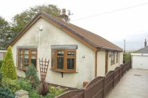 2 bed Detached Bungalow for sale in Douglas Avenue...
