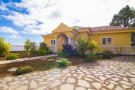 Finca in Canary Islands, Tenerife for sale