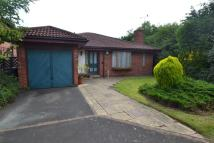 3 bed Detached Bungalow in Wellridge Close...