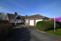 Detached Bungalow in North Ridge, Whitley Bay