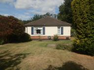 Detached Bungalow for sale in Tentelow Lane, UB2
