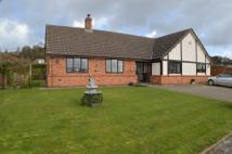 4 bedroom Detached Bungalow in School Lane, Hints...