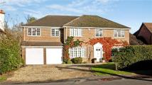 Detached property for sale in Links Road, Bramley...