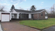 Detached Bungalow in 51 Colinhill Road...