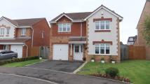 4 bed Detached home in Flinders Way...