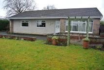 Detached Bungalow in Sidehead Road...