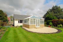 Moor Royd Detached Bungalow for sale